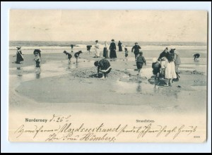 Y16650/ Norderney Strandleben AK 1904
