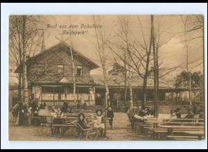V389/ Volksheim Haidepark b. Dresden AK 1910