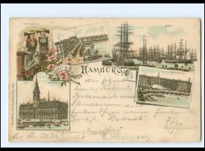 Y16810/ Hamburg Hafen Alster-Arkaden Rathaus 1898 Litho AK
