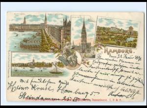 Y16809/ Hamburg Alster Nicolaikirche Zoologischer Garten 1898 Litho AK