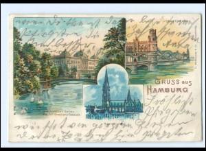 Y16807/ Hamburg Elbbrücken Nicolaikirche Botanischer Garten 1903 Litho AK