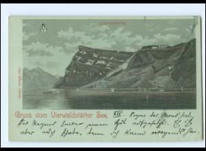 Y16959/ Gruß vom Vierwaldstätter See Litho AK 1899 Schweiz