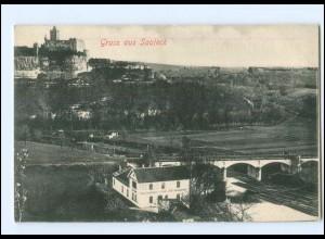 V539-066/ Saaleck Brücke AK ca.1910