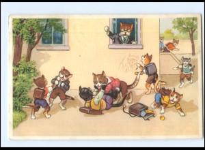 V526/ Menschliche Katzen Schule AK 1954