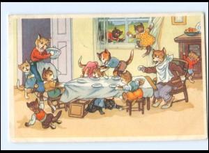 V525/ Menschliche Katzen AK 1954
