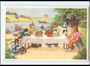 V524/ Menschliche Katzen Picknick AK 1954