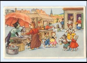 V516/ Menschliche Katzen Markthändler AK 1954