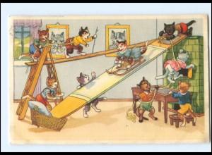 V517/ Menschliche Katzen spielen AK 1954