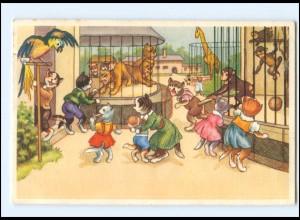 V523/ Menschliche Katzen Zoo Tierpark AK 1954