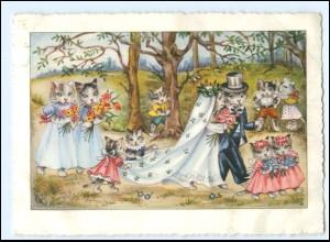Y16987/ Katzen heiraten Hochzeit sign: EK AK 1954