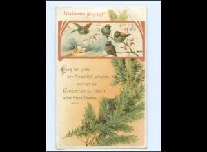 Y17126/ Weihnachten Singvögel Litho AK