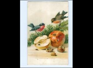Y17095/ Vögel Obst Apfel Litho AK 1913