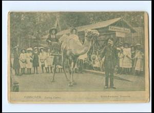 Y17098/ Hannover Zoologischer Garten Kinder-Karawane Dromeda AK 1918
