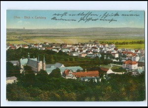 XX10990/ Danzig Olivia Blick v. Carlsberg AK 1915