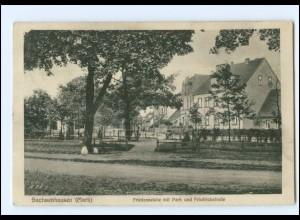 XX11027-165/ Sachsenhausen (Mark) Friedenseiche, Friedrichstr. AK 1931