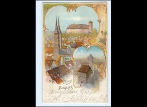 XX14706/ Gruß aus Nürnberg Litho AK 1898 Courier Privat-Stadtpost