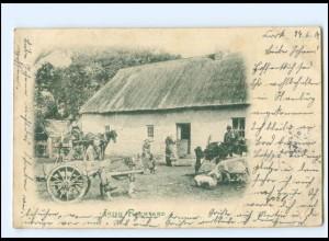 S2414/ Cork Irland Irish Farmyard AK 1902