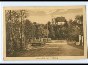 Y17596/ Ashausen bei Winsen Luhe - Osterberg AK 1930