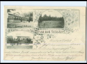 S2497/ Hamburg Gruß aus Volksdorf Waldesruh AK 1898