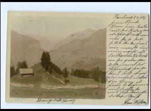 S2550/ Schynige Platte Schweiz Foto H. Wettern AK 1898