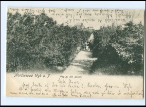 XX11146/ Wyk auf Föhr Weg zu den Bädern AK 1906