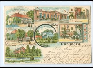 XX11401/ Gruß aus Dorfmark mit Bahnhof Litho AK 1907