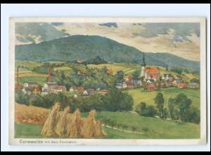 XX11995-027/ Cunewalde Künstler AK 1928