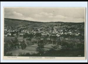 XX11558-6531/ Schweppenhausen Gesamtansicht 1931 AK