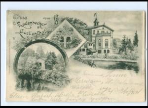 XX11711/ Rodenbecker Quellenthal AK 1899 Hamurg