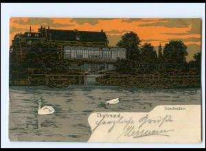 XX11695/ Dortmund Buschmühle Litho AK 1906