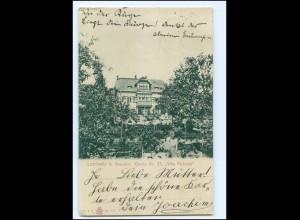 XX11544-01./ Loschwitz bei Dresden Villa Felicitas ca.1900 AK