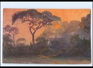 XX11883/ Vollbehr Künstler AK Tropenzauber Kamerun Afrika Kolonien ca.1912