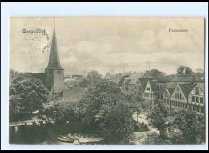 XX11611/ Hamburg Bergedorf Panorama 1911 AK