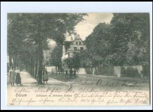 XX11512/ Husum Schlossstraße mit früherem Schloss 1904 AK