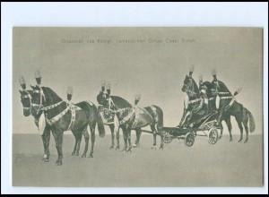 XX11665/ Zirkus königl.-rumänischer Zirkus Cesar Sidoli Pferdedressur AK ca.1910