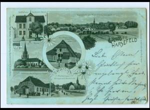 XX11631-2165/ Gruß aus Harsefeld 1901 Litho AK