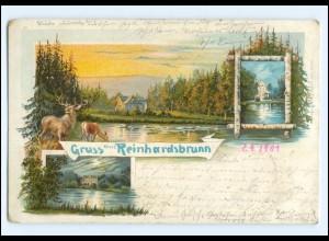 Y17947/ Gruß aus Reinhardsbrunn Litho Ak 1901