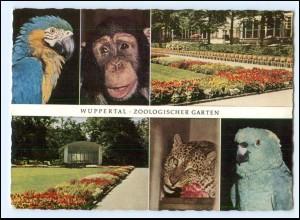 Y18082/ Wuppertal Zoologischer Garten Tierpark AK 1962