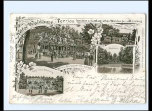 XX11822/ Ahrensburg Hotel Waldburg Litho AK 1897