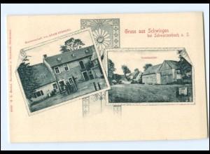 V1443-8676/ Schwingen bei Schwarzenbach a. S. AK ca.1900