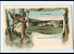 Y18490/ Kurort Herrenwies Schwarzwald AK ca.1910