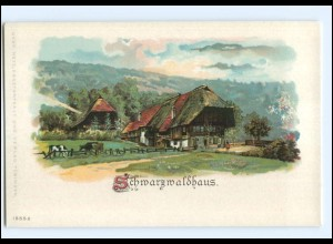 Y18466/ Schwarzwaldhaus schöne Litho AK ca.1900