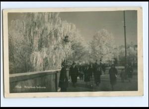 V1546/ Riga Brivibas bulvars Foto Ak 1929