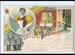 XX12758/ Gruß von der Vogelwiese Dresden Litho AK 1896