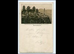 XX12757-3388/ Burgberg bei Bad Harzburg Harz Litho Vorläufer AK 1894