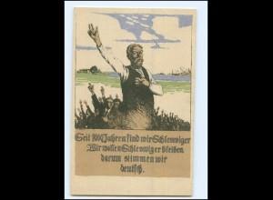 XX12749/ Abstimmung 1920 AK Schleswig--Holstein