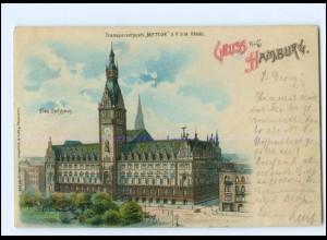 XX12486/ Gruß aus Hamburg Rathaus Meteor Halt gegen Licht Litho AK 1899