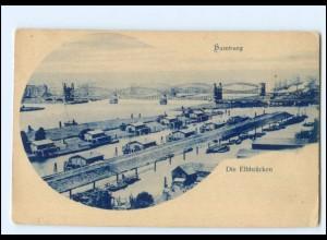 XX12429/ Hamburg Elbbrücken AK ca.1900