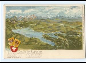 Y18668/ Gruß vom Bodensee schöne Litho AK ca.1900