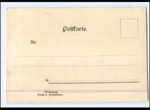 Y18733/ Konstanz Das Münster Litho Künstler AK C. Biese ca.1900